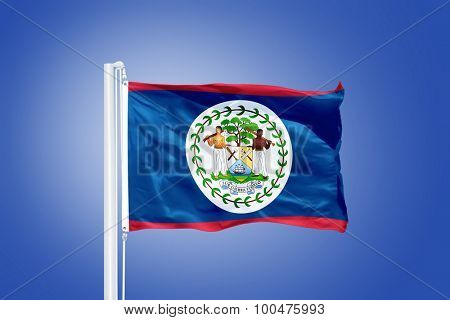 Flag of Belize flying against a blue sky.