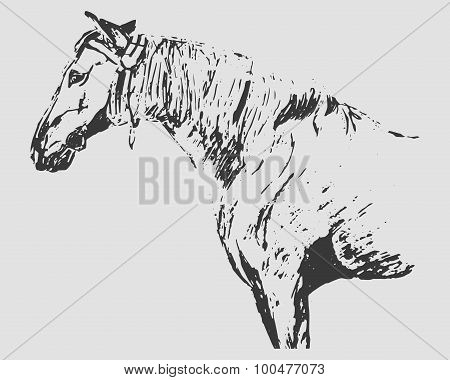 Horse Graphic Freehand Drawing (gray Tones)