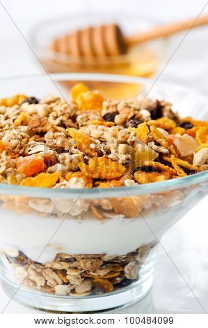 Healthy granola in glass bowl with plain yoghurt