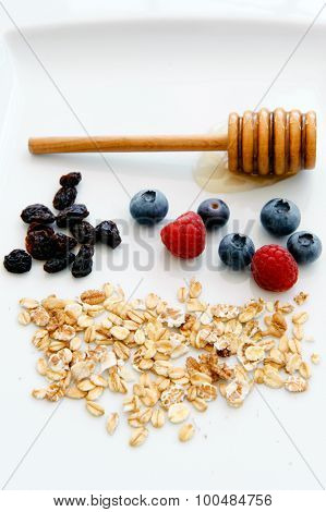 Oats, honey, raisin, fresh blueberry and raspberry form a well balanced diet