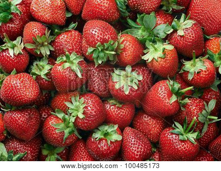 Strawberry raw fruit and vegetable backgrounds overhead perspective, part of a set collection of healthy organic fresh produce