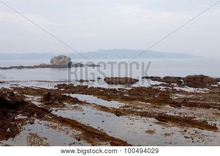 Nice seascape at low tide with the cloudy sky