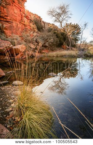 Creek bed in high desert near Cottonwood, Arizona