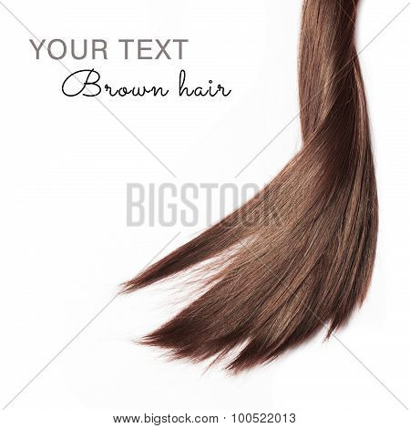 Brown hair on white background with sample text