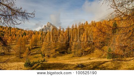 Colorful Autumn Forest And Mountain-dolomite,italy