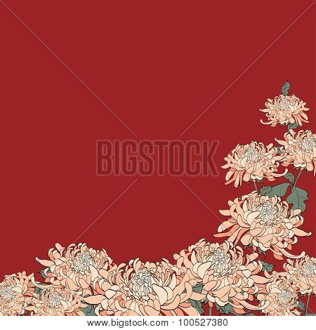 Bouquet Of Chrysanthemum On Maroon Background.