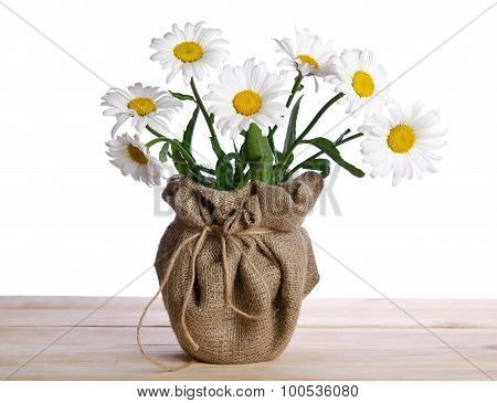 Beautiful Seven Camomile Flowers In Flowerpot  On The Wooden Table