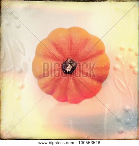 Vintage style top view  of a pumpkin - Instagram filter
