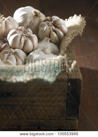 garlic on the wooden table