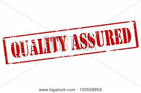 Rubber stamp with text quality assured inside vector illustration