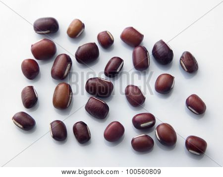 close up of the azuki beans