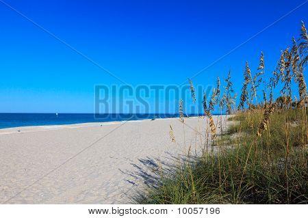 Beach, Blue Sky, Sand