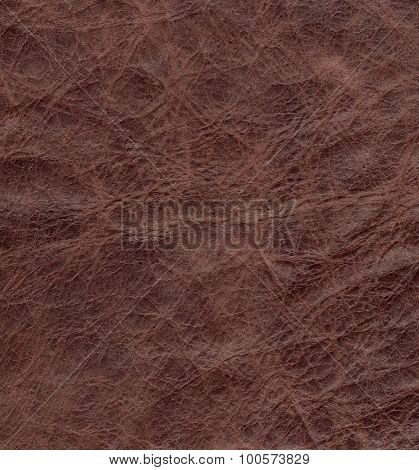 Texture of natural brown crumpled skin