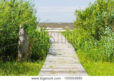 Wooden Boardwalk Leading To A Sea Coast, Blurred Image