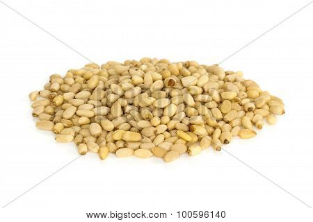 Pine Nuts From Above