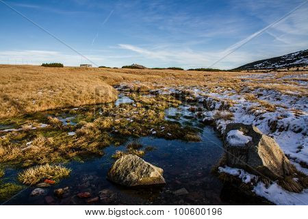 Swamps With Snow And Rocks-krkonose,czech Republic