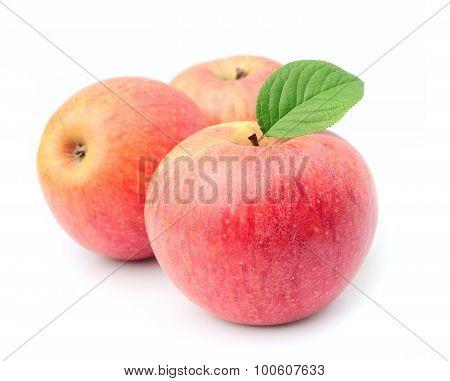 Ripe Apples Fruit