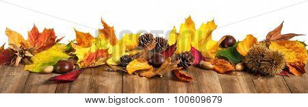 Autumn Leaves On Wooden Table, Studio Isolated