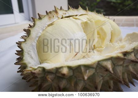 Durian Asian Tropical Smell Spike Thai Exotic Concept