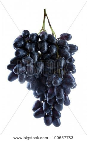 Fresh ripe grapes, isolated on white