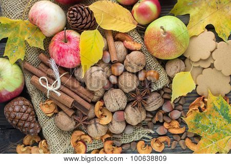 Autumn composition of fruits, nuts and spices