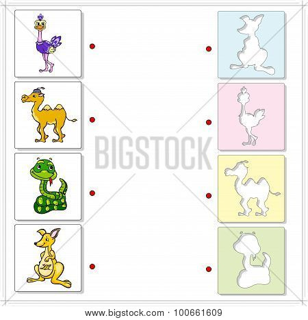 Ostrich, Camel, Snake And Kangaroo. Educational Game For Kids