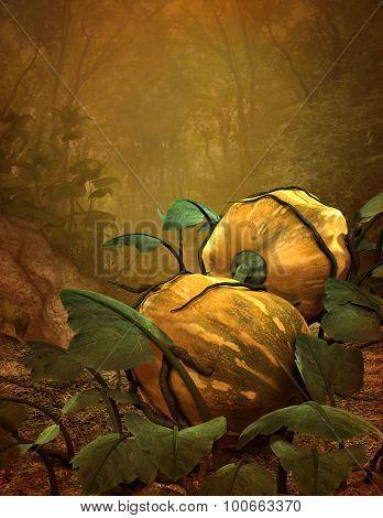 Pumpkins, 3D Cg
