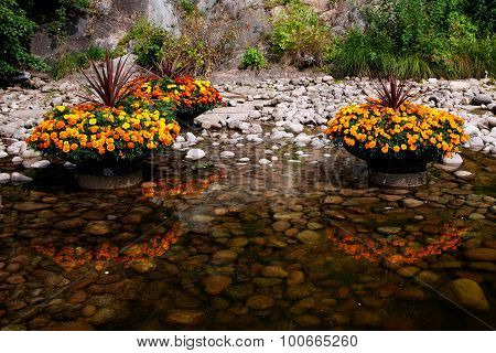 Beautiful flowers in planters reflecting in the water