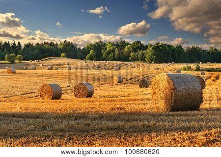 summer haystacks 2