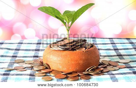 Coins In Pottery Bowl And Out Of Around Bowl Are Placed On A Silk Loincloth Floor. And The Tree Is T