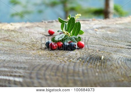 Some sweet blueberries and cranberries on wood