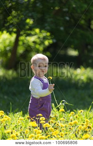Little Girl In Violet Overalls Stand With A Dandelion In Hands On A Big Glade