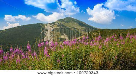 Hill In Range Mala Fatra, Slovakia
