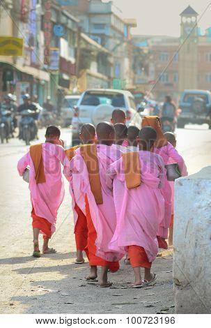 Buddhist Nuns Walking Along A Street