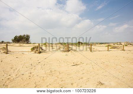 Dunes De La Marina