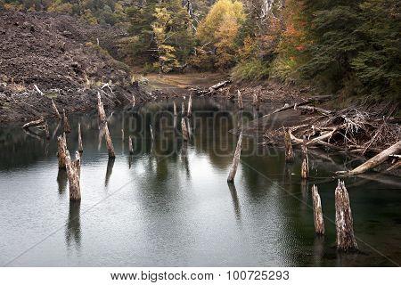 Arcoiris Lagoon From Conguillio National Park