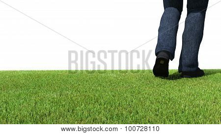 Walking On Green Grass Back