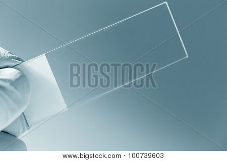 microscope slide in hand