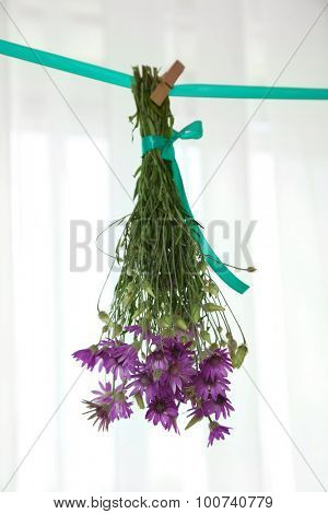 Bouquet of wild flowers drying on thong on light background