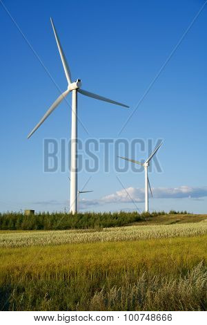 Windmills on prairie