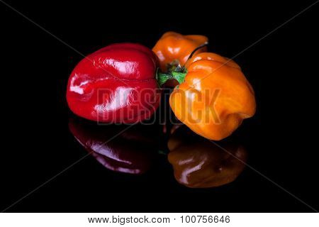 Three habanero peppers yellow and red