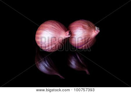 Two shallot onions