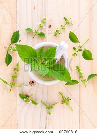 The Circle Of Lemon Basil( Hairy  Basil ) Leaf And Flower On Wooden Background.