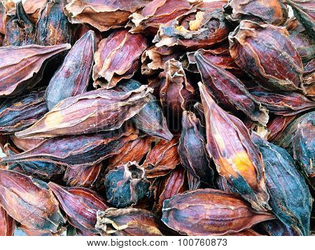 Dried Gardenia Fruit