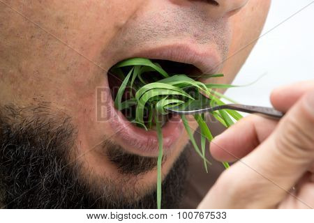 Man With Fork Eating Wheatgrass, Isolated On White.