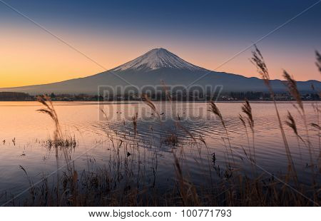 Mount Fuji At Dawn With Peaceful Lake