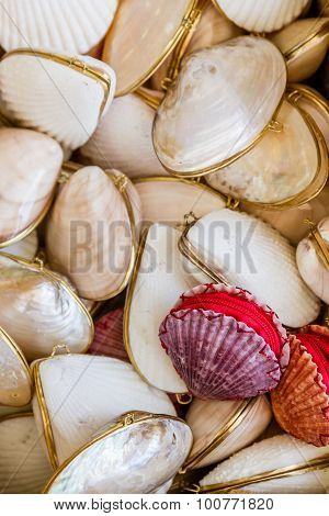 Gifts From Exotic Seashell And Cockleshell Piled Together