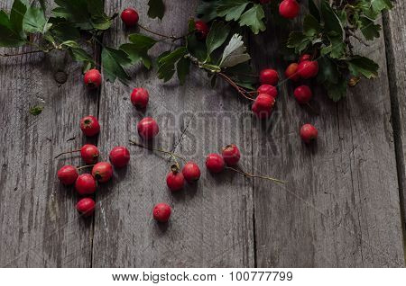 Hawthorn on wooden table background.
