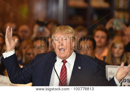Donald Trump gestures emphatically