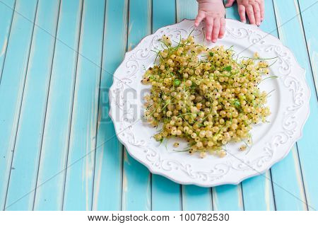 Little Baby Hands With White Currant On Plate On Wooden Turquoise Background